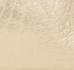 WHITE ARGENT